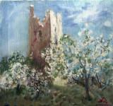 Pomi infloriti in nordul Italiei(colectie particulara)