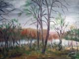Peisaj la Pustnicu  (colectie particulara)