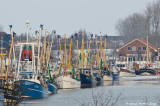 Winter at the Harbor