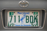 Maryland License Plate - Treasure the Chesapeake