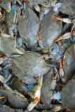 Live crabs, Chinatown