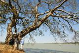 Lake Tana, Bahir Dar