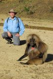The Gelada were totally undisturbed by our presence