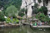 Pool at Cave Villa Batu Caves