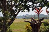 The ITI flight inbound from Manila