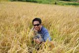 Dennis in a field of rice