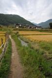 Path along an irrigation canal