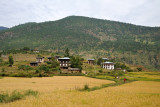 Looking back, Chimi Lhakhang is on the hillside beyond the village