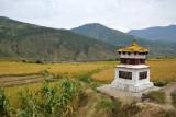 Stupa in the rice fields around Lobesa
