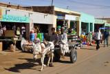 Donkey Cart driving through El Daba