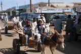 Boys on a donkey cart, El Daba