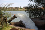 Irrigation using Nile river water