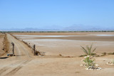 The causeway-like road leading to the Sudan Red Sea Resort
