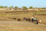 Donkey cart on a dirt road