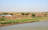 Brickyard on the west bank of the Blue Nile at Wadi Medani