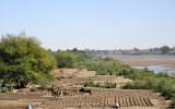 Making mud bricks on the banks of the Atbara River