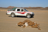 Dead Camel Highway between Sesibi and Soleb