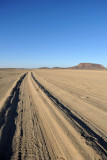 Dead Camel Highway