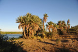 Banks of the Nile at Soleb