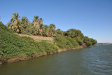 West Bank of the Nile at the New Delgo Ferry Landing