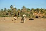 East Bank of the Nile between El Kurru and Karima