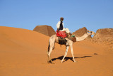 Oh no...camel guys...let's hope they're not as annoying as Egypt
