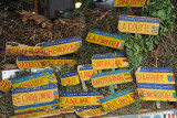 Port Louis Central Market - herbs for cures