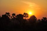 Bagan sunrise, treetop level flight