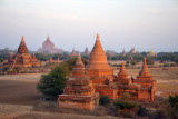Low flight over the Central Plains of Bagan