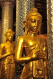 Buddhas at Shwedagon Paya