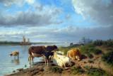 Landscape with Cattle, Anton Mauve (1838-1888)