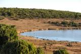 Rooidam waterhole, Addo Elephant National Park