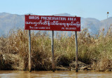 Birds Preservation Area, Nyang Shwe - You can watch bird