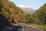 Scenic route D118, Forêt de Gesse, Pyrénées Orientales