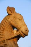 Horse, Siddhi Lakshmi Temple, Durbar Square, Bhaktapur