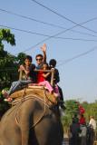 Elephant safari, Chitwan National Park