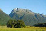 Deer Flat, Fiordland National Park