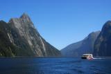 Fiordland National Park - Milford Sound
