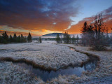 Yellowstone Landscapes I