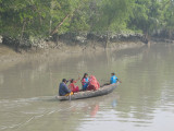 Dug-out in the Sundarbans