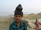 Boy with a nasty old crow on his head!