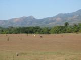 Countryside around Manaca Iznaga  plantation