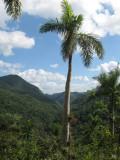 Trail to Caburni in the Topes de Collantes
