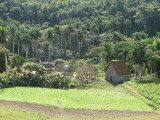 On the road to Manicaragua
