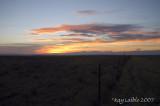 Idaho Wildllife
