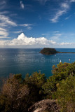 Barrenjoey Headland from West Head, portrait
