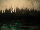 Stalactites in the Cenote