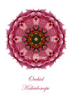 20 - Pink Orchid Kaleidoscope Card