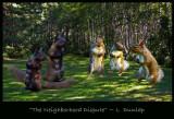 The Neighborhood Dispute