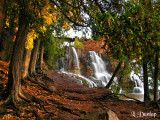Gooseberry Middle Falls With Cedars 1